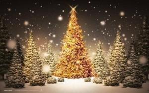 Wigilia Zakopane Boże Narodzenie Menu
